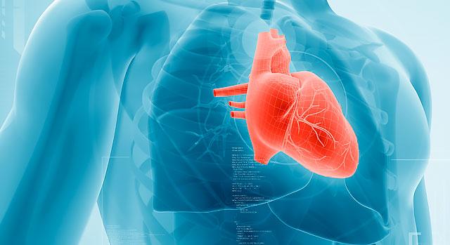 кардиология софия - преглед при кардиолог