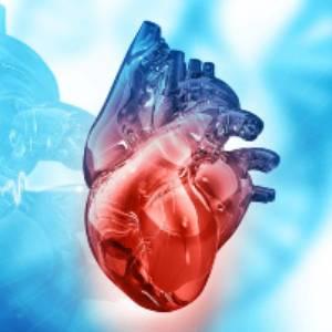 кардиология - специалности в медицински център INSPIRO