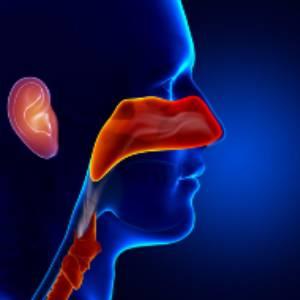 унг - уши нос и гърло - медицински център INSPIRO