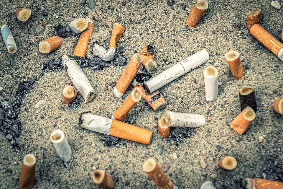 Всичко по темата тютютнопушене и ефектите върху тялото.