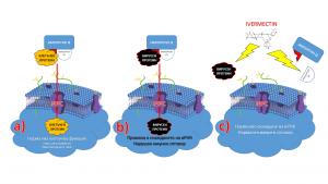 Ивермектин за лечение на COVID 19 време ли е за голямата премиера фиг 1